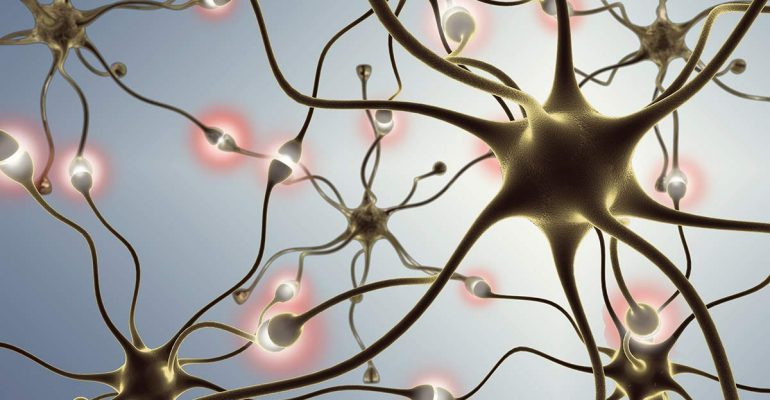 the-stages-of-alzheimers