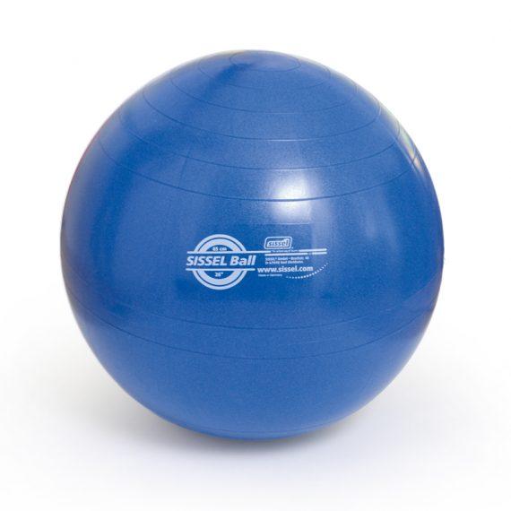 Exercise Ball lopta za vježbanje